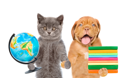 Puppy and kitten holds globe and books. isolated on white background.