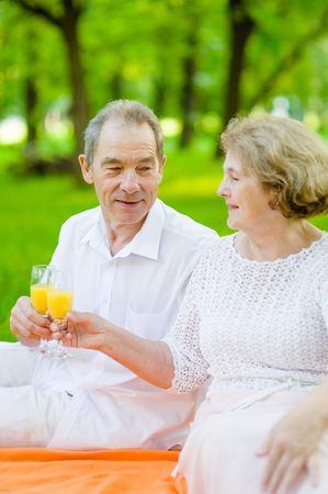 Elderly couple clinking glasses with orange juice on a picnic outdoors.