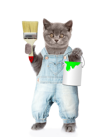 Funny cat with paint brush and paint bucket. isolated on white background.