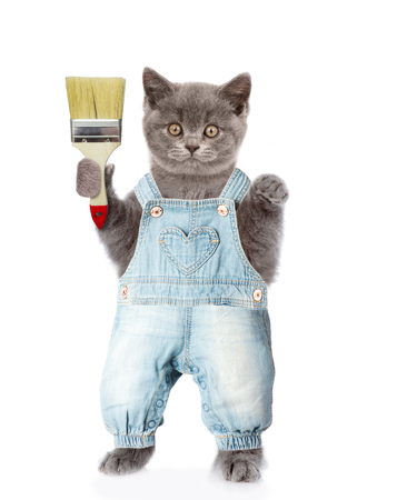 Funny cat with paint brush. isolated on white background.