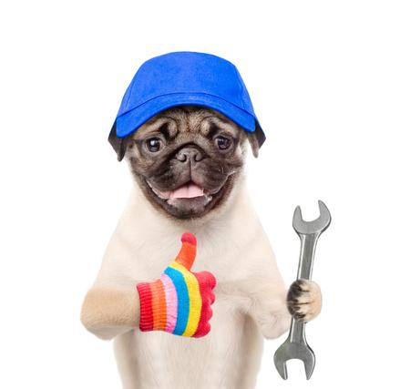 Trabajador divertido del perro en gorra azul con la llave que muestra los pulgares para arriba. Aislado en el fondo blanco.