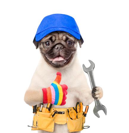 De grappige hondarbeider in blauw GLB met hulpmiddelriem en moersleutel die beduimelt omhoog tonen. Geïsoleerd op witte achtergrond Stockfoto - 90540671