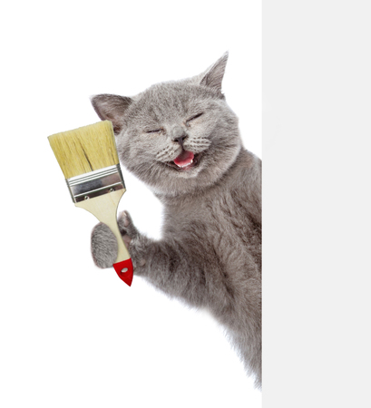 Funny cat with paint brush behind white banner. isolated on white background.
