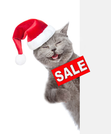 Happy cat  in red christmas hat with sales symbol above white banner. isolated on white background.