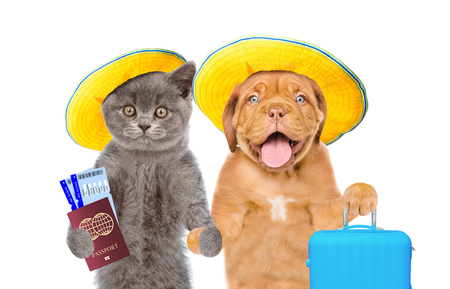 Kitten and puppy in summer hats holds suitcases, airline tickets and passport ready for a vacation. isolated on white background.