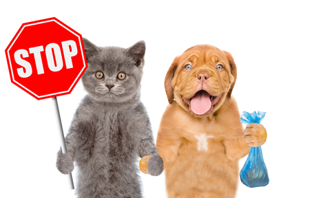 puppy and kitten holds plastic bag and stop sign in paws. Concept cleaning up dog droppings. isolated on white background.