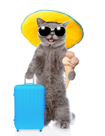 Happy cat in summer hat holds suitcase and ice cream. isolated on white background. Stock Photo