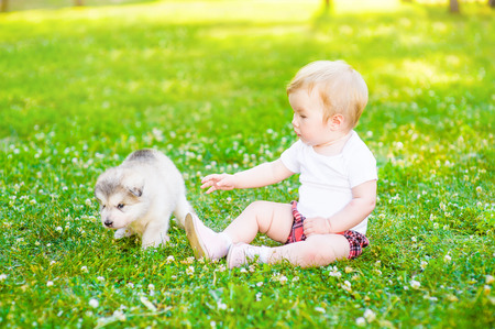 Baby girl playing on the grass with puppy in the summer park. Stock Photo