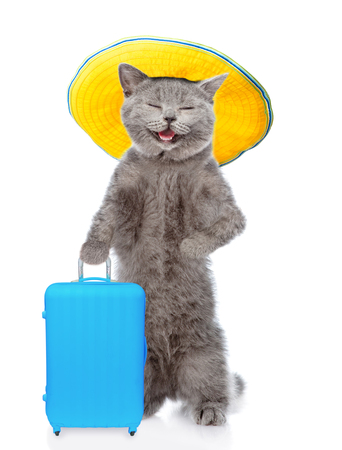 Happy cat in summer with suitcase. isolated on white background.