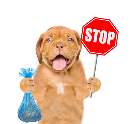"puppy holds plastic bag and road sign ""stop"". Concept cleaning up dog droppings. isolated on white background."