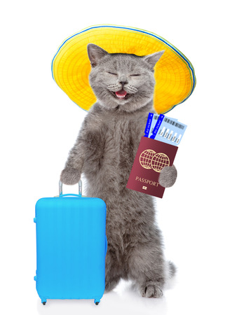 Happy cat with summer hat holds suitcase, airline tickets and passport ready for a vacation. isolated on white background. Stock Photo