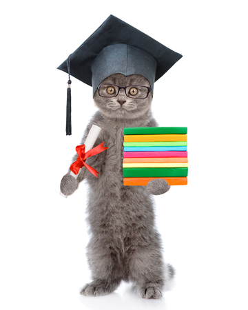 Cat in black graduation hat holds books and diploma. isolated on white background. Standard-Bild