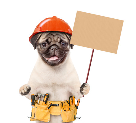 puppy worker in hard hat with tool belt holding blank banner mock up on wood stick. isolated on white background.