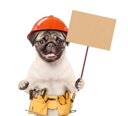 Trabajador cachorro en casco con cinturón de herramientas sosteniendo pancartas en blanco simuladas en palo de madera. aislado sobre fondo blanco. Foto de archivo