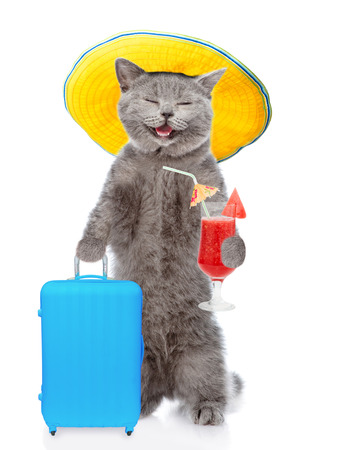 Happy cat in summer hat holds suitcase and tropical cocktail. isolated on white background. Stock Photo
