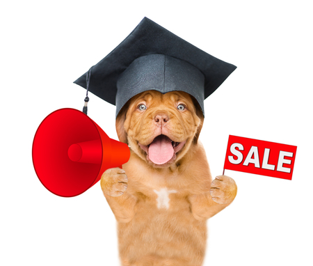 Graduated dog holds megaphone and sales symbol above white banner. isolated on white background.