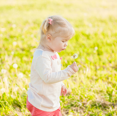 Funny baby girl blowing a dandelion in the rays of the setting sun. Stock Photo