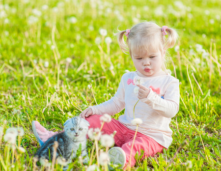 Little girl with kitten blowing dandelion on green summer grass.