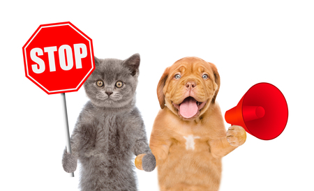 Kitten with sign stop and puppy with a megaphone. isolated on white background. 写真素材 - 104281532