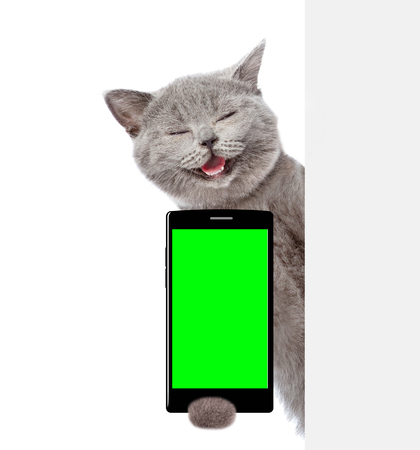 Happy cat with smartphone peeking behind white banner. Isolated on white background.