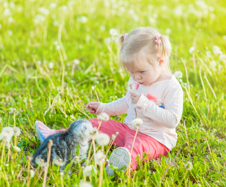Little girl sitting on green summer grass and blowing dandelion on the kitten.