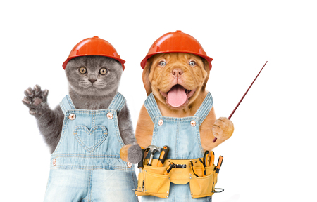 Funny kitten and puppy workers in hard hats with tool belt holds pointing stick. Isolated on white background. Space for text.