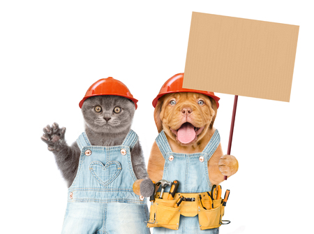Funny puppy and kitten in hard hats worker with tool belt holding blank banner mock up on wood stick. isolated on white background.