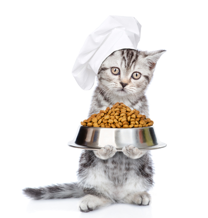 Tabby kitten in chef's hat with a bowl of dry food. isolated on white background.