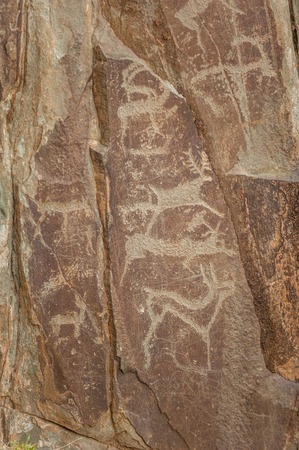 Petroglyphs of Altay. Ancient rock paintings in the Altai Mountains, Russia. Stock Photo
