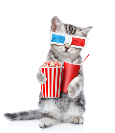 Cute kitten in the 3d glasses with popcorn and cola. isolated on white background.