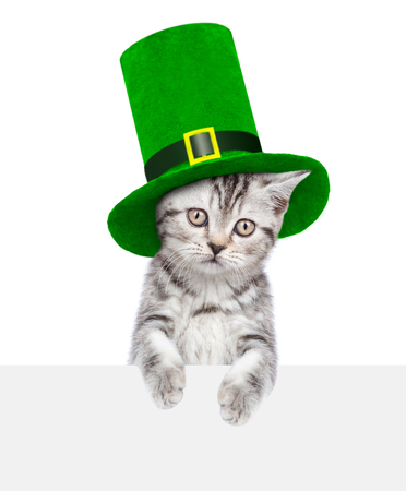 St. Patricks Day. Funny kitten in the hat of the leprechaun above empty white banner. isolated on white background.