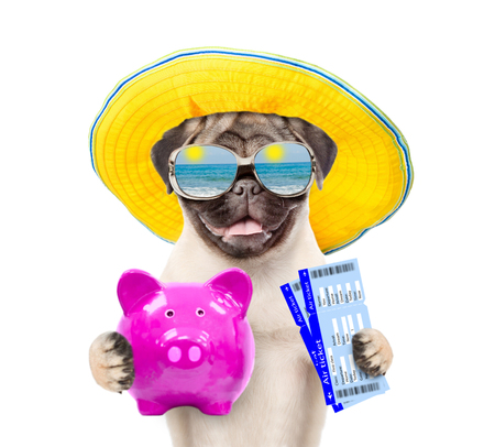 Happy puppy in summer hat is holding a piggy bank and airline tickets. isolated on white background.