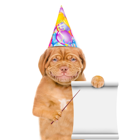 Smiling puppy in birthday hat pointing on empty list. isolated on white background.