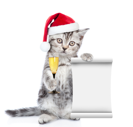 Kitten in red santa hat  holding empty list and glass of champagne. isolated on white background.. 스톡 콘텐츠