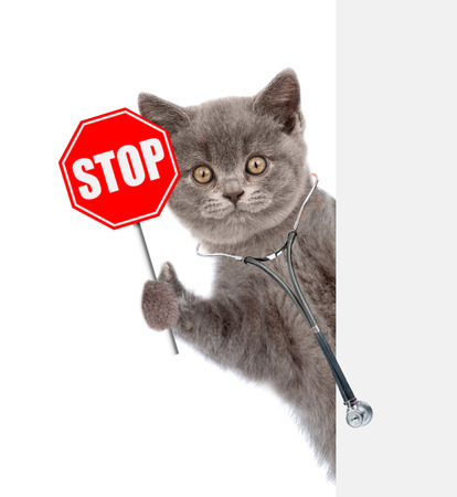 Cat  with a stethoscope on his neck holding sign stop in paw behind empty white banner. isolated on white background.