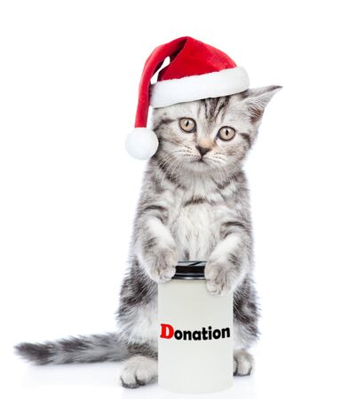 Kitten in red christmas hat with a donation can, asking money for  charity, looking at camera. isolated on white background.