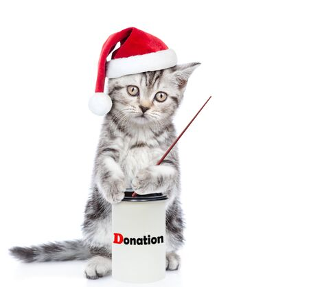 Kitten in red christmas hat with a donation can, asking money for  charity and pointing away on empty space. isolated on white background.