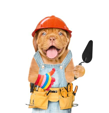 Funny puppy builder with a trowel showing thumbs up. Isolated on white background.