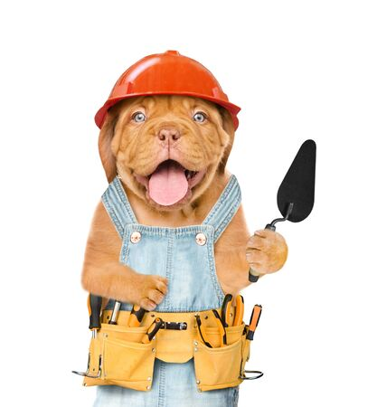Funny puppy builder with a trowel. Isolated on white background. Imagens
