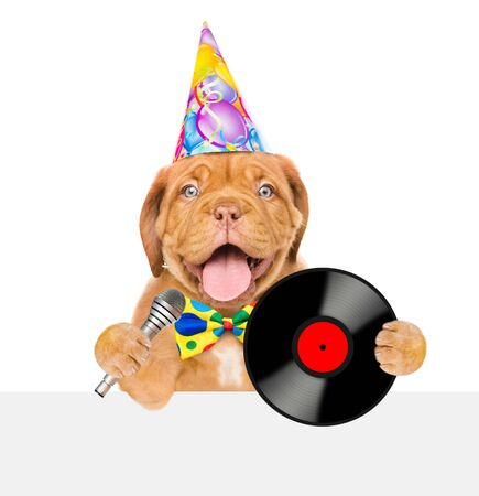Funny puppy in party hat with microphone and vinyl record above white banner. isolated on white background.