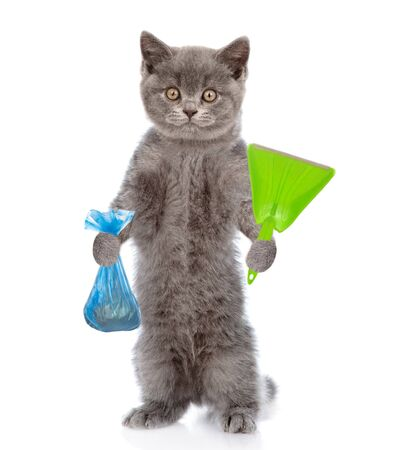 Cat holds plastic bag and scoop. Concept cleaning up dog droppings. isolated on white background. Banque d'images