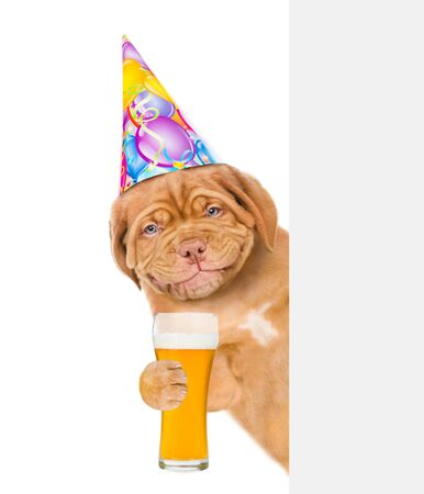 Smiling puppy in birthday hat holding light beer behind white banner. isolated on white background.