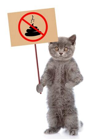 """Kätzchen hält Schild """"kein Hundehaufen"""". Konzept, das Hundekot aufräumt. isoliert auf weißem Hintergrund."""