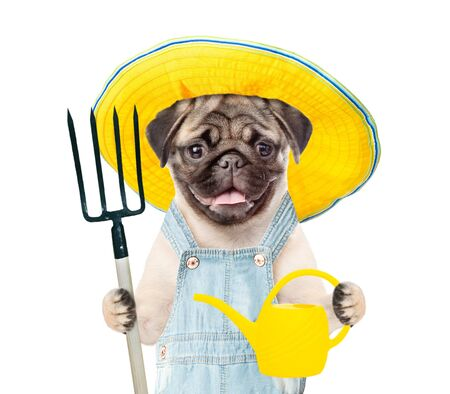 Puppy farmer with a watering can and pitchfork. isolated on white background.