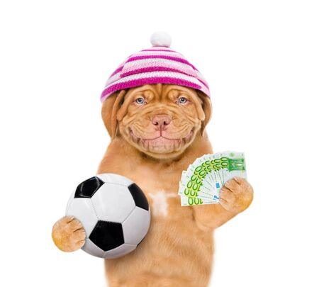 Smiling dog with warm hat holding money and ball in his paws. isolated on white background.