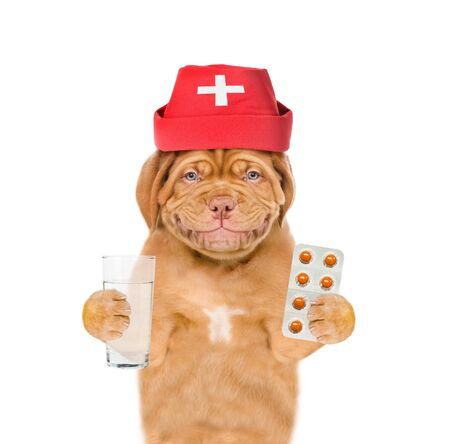 Smiling puppy dressed like a doctor holding glass of water and pills. Isolated on white background. Foto de archivo - 133390937