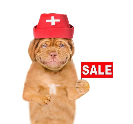 Smiling puppy dressed like a doctor with sales symbol. isolated on white background. Foto de archivo - 133390960