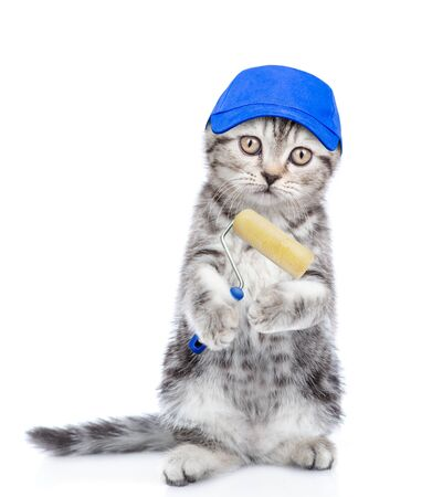 Funny kitten with blue cap holding paint roller and looking at camera. isolated on white background.