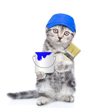Tabby kitten in blue hat with paint brush and paint bucket. isolated on white background.