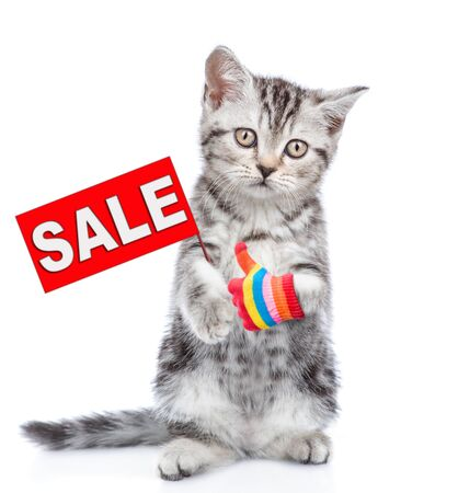 Tabby kitten with sales symbol showing thumbs up. isolated on white background. Stock fotó